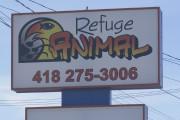Le Refuge animal de Roberval est constamment à... (Photo courtoisie) - image 1.0