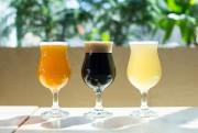 Trois bières brassées par le Noctem et offertes... (PHOTO EDOUARD PLANTE-FRÉCHETTE,LA PRESSE) - image 1.1