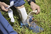 La prothèse de Santiago Quintero.... (Agence France-Presse) - image 1.0