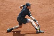 En trois jours, Andy Murraya passé près de... (AFP, Thomas Samson) - image 3.0