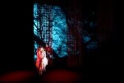 Marie Brassard «m'a laissée très libre dans l'interprétation.... (Simon Guilbault) - image 3.0