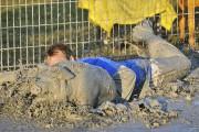 Festival du cochon de Sainte-Perpétue... (Archives Le Nouvelliste) - image 1.0