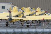 Une dizaine d'avions sont prêts à pulvériser des... (Photo Le Quotidien, Louis Potvin) - image 1.0