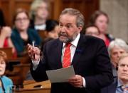 Thomas Mulcair, chef du Nouveau Parti démocratique... (PHOTO FRED CHARTRAND, LA PRESSE CANADIENNE) - image 1.0