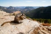 Les parcs nationaux américains fêtent cette... (PHOTO ALAIN ROBERGE, LA PRESSE) - image 2.0