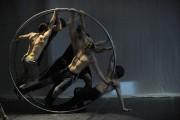 Puisque c'est un membre du Cirque Éloize qui... (Photo courtoisie) - image 2.0