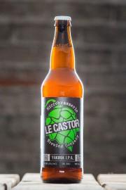 Douze bières IPA versées dans des verres identiques... (PHOTO EDOUARD PLANTE-FRÉCHETTE, LA PRESSE) - image 1.0