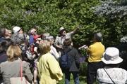 Larry Hodgson donnera une visite des jardins du... (Fournie par le Domaine Joly-De Lotbinière) - image 2.0
