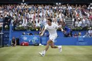 S'il se rend loin dans le tournoi, Milos... (Agence France-Presse) - image 3.0