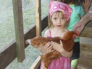 Alicia rencontre une poule.... (Photo courtoisie) - image 2.1