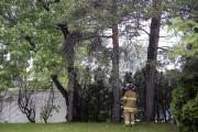 Les pompiers ont été appelés à se rendre... (Photo Le Quotidien, Jeannot Lévesque) - image 2.1