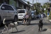 Nakhon Thianprasert ramène satante de 77ans, après que... (AFP, Lillian Suwanrumpha) - image 2.0