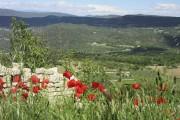 Aux abords de Saignon, le paysage s'étend, bordé... (Le Soleil, Mylène Moisan) - image 4.0