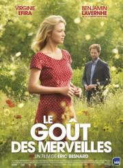 Affiche du film Le goût des merveilles... (IMAGE FOURNIE PAR AXIA FILMS) - image 1.0