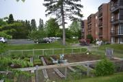 Un joli jardin est aménagé derrière le bâtiment,... (Claudie Laroche) - image 1.1
