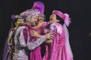 Le comédien Jean-François Boudreault a participé au spectacle... (Photo Le Quotidien, Rocket Lavoie) - image 1.0