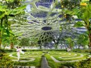 Serait-il utopique d'imaginer que d'ici quelques années nous... (Vincent Callebault Architectures) - image 1.0