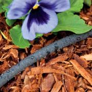 Avec un tuyau suintant, on peut arroser efficacement... (Photo, Home Depot) - image 1.0