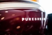 L'entreprise québécoise Purebreed a été le fleuron de... - image 1.0