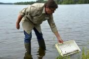 Le biologiste Guy Verreault a déplacé 300 anguilles,... (Collaboration spéciale Johanne Fournier) - image 2.0