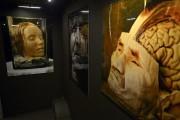 Le musée de la mort de Jack Burman... (Le Soleil, Yan Doublet) - image 3.0