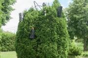 À l'abandon, la sculpture avait été complètement envahie... (Archives Le Progrès-Dimanche, Rocket Lavoie) - image 1.0