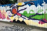 Wark Rocinha avait hérité du mandat de peindre... (Photo Guillaume Piedboeuf) - image 3.1