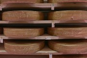 Meules du fromage Louis d'or dans la salle d'affinage.... (Photo Mathieu Waddell, La Presse) - image 2.0