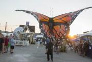 Le Festival des traditions du monde s'est ouvert... (Spectre Média, Julien Chamberland) - image 2.0