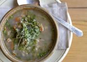 La fameuse soupe aux gourganes ... (Le Soleil, Yan Doublet) - image 4.0