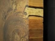 L'artisan-ébéniste est arboriculteur de formation. Il connaît et... - image 1.0