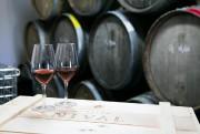 Les premiers vins de vidal et de pinot... (Photo Hugo-Sébastien Aubert, Archives La Presse) - image 3.0