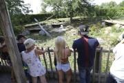 Des visiteurs devant l'enclos des lions au Zoo... (Janick Marois, La Voix de l'Est) - image 1.0