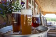 Les bières de Frampton Brasse.... (PHOTO OLIVIER PONTBRIAND, ARCHIVES LA PRESSE) - image 5.0