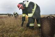 En cette saison des récoltes, des travailleurs mexicains... (Photo Le Quotidien, Michel Tremblay) - image 1.1