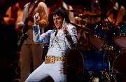 Elvis Experience... (Photothèque Le Soleil, Ercik Labbé) - image 5.0