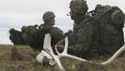 Les crânes de caribou sont monnaie courante dans... - image 3.0