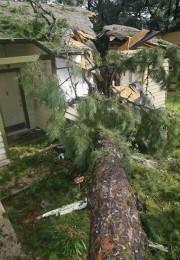 Un arbre est tombé sur une maison lors... (PHOTO PHILIP SEARS, REUTERS) - image 1.0