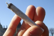Marijuana... (Photothèque Le Soleil) - image 7.0