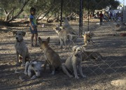 Dans un territoire dévasté par plusieurs guerres avec... (AFP, Mohammed Abed) - image 2.0