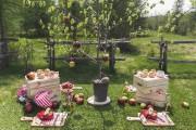 La table Pique-nique au verger... (Tirée de L'art de recevoir) - image 1.0