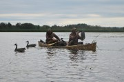 CHRONIQUE / Les canards sauvages se laissent peut-être... (Photo Le Progrès-Dimanche, Roger Blackburn) - image 1.0