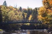 (Fournie par la Société de la rivière Saint-Charles) - image 6.0