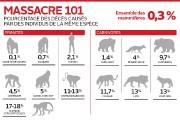 L'espèce humaine tue ses congénères environ sept fois... (Infographie, Le Soleil) - image 2.0