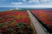 Les deux coureurs de la région parcourront ensemble... (Archives La Presse canadienne) - image 1.0