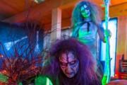 Plusieurs activités d'Halloween sont proposées à l'Aquarium du... (PHOTO FOURNIE PAR L'AQUARIUM DU QUÉBEC) - image 2.0