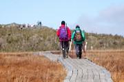 Des passerelles dirigent les marcheurs vers le sommet... (ricochetdesign.qc.ca) - image 2.0