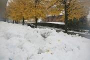 Beaucoup de neige est tombée à Waterloo.... (Catherine Trudeau, La Voix de l'Est) - image 2.0