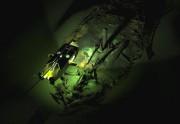 Épave d'un navire datant de l'Empire byzantin découverte... (Photo fournie par l'Université Southampton) - image 1.1