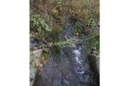 Des eaux usées provenant du restaurant Tim Hortons... (Janick Marois, La Voix de l'Est) - image 1.0